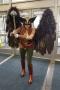 Hawkwoman Cosplay Photo
