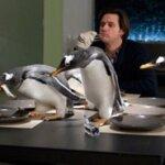 Mr Popper's Penguins Photos