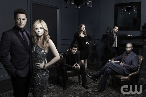 The Cast of 'Ringer'