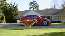 BOLT THE DOG CHASING THE ALL-NEW VW BEETLE IN THE 2012 GAME DAY AD.
