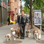 Justin Silver stars in 'Dogs in the City'