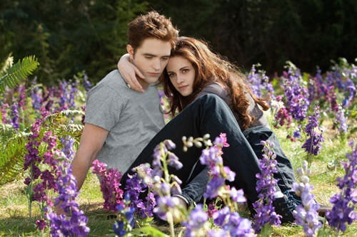 Rob Pattinson and Kristen Stewart in Breaking Dawn Part 2