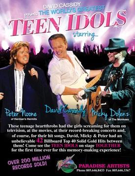 Teen Idols in Concert Poster
