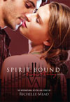 Vampire Academy Book 5 Spirit Bound