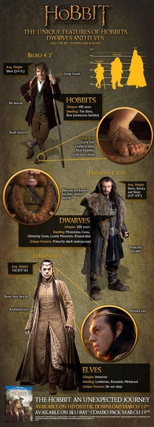 The Hobbit Infographic