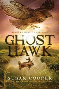 Ghost Hawk Book Cover