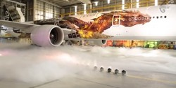 Air New Zealand The Hobbit The Desolation of Smaug Plane