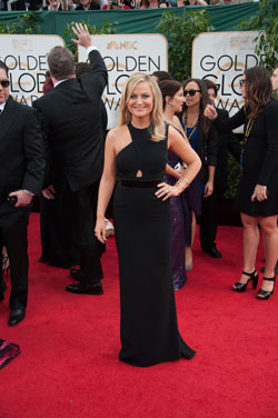 Amy Poehler Executive Produces New NBC Series