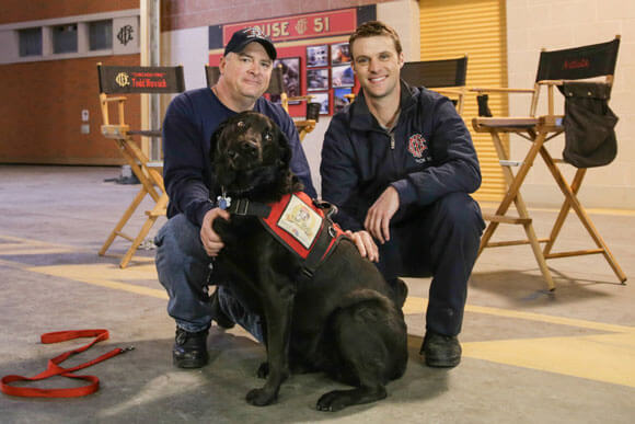 Chicago Fire Top Dog