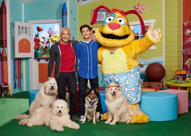 Cesar Millan and Cute Dogs Star in Mutt and Stuff