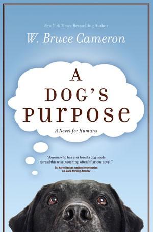 Dennis Quaid and Britt Robertson Star in A Dog's Purpose