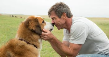 A Dog's Purpose Dennis Quaid