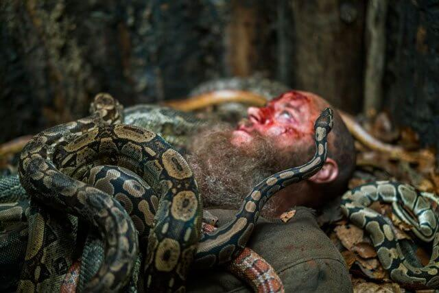 Viking season 4 episode 15 Travis Fimmel and Snakes