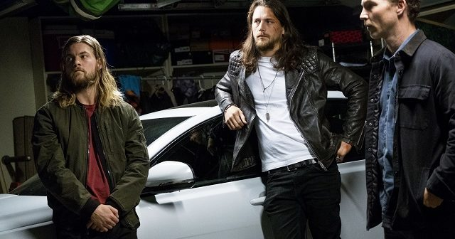 'Animal Kingdom' and 'Angie Tribeca' Earn New Season Renewals