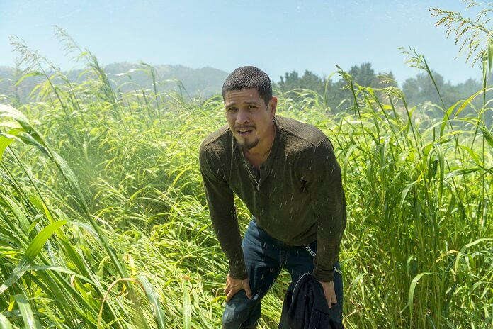 Mayans M.C. Season 1 Episode 6 Recap